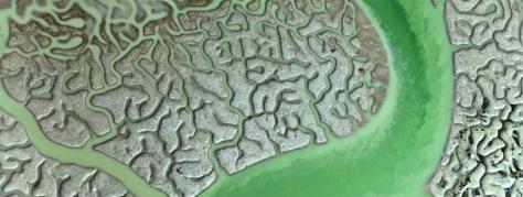 isla-minima-marismas-guadalquivir